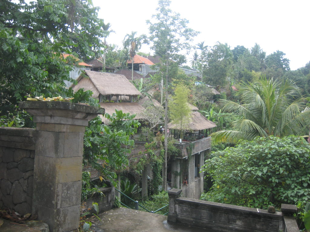 Ubud town has many shops, restaurants and sights to see including the Monkey Forest