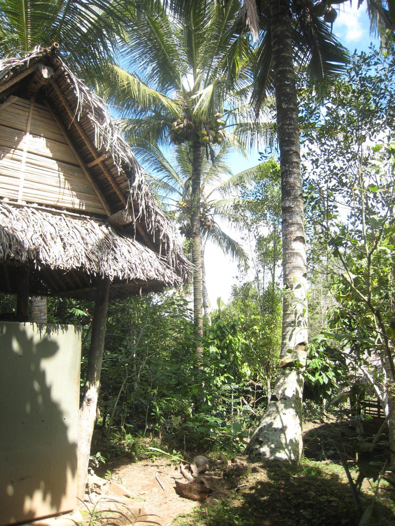 Family travel to Ubud, Bali