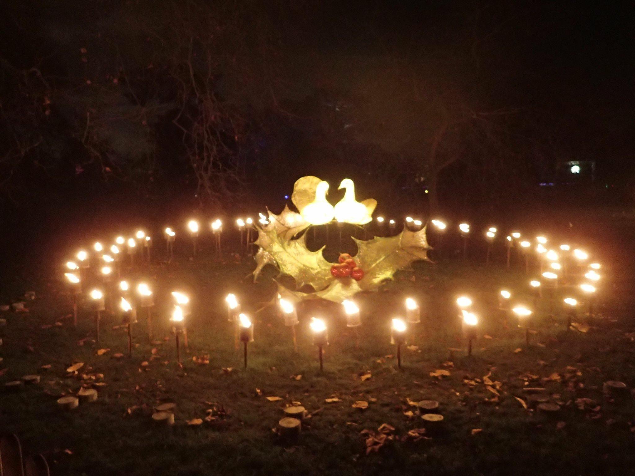 Christmas at Kew - magical light trail at Kew Gardens - Awaybies