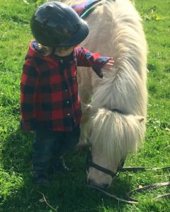 Shetland pony riding club for toddlers and kids
