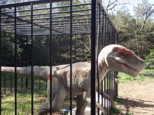 Caged Raptors dinosaurs escaping at Jurassic Kingdom