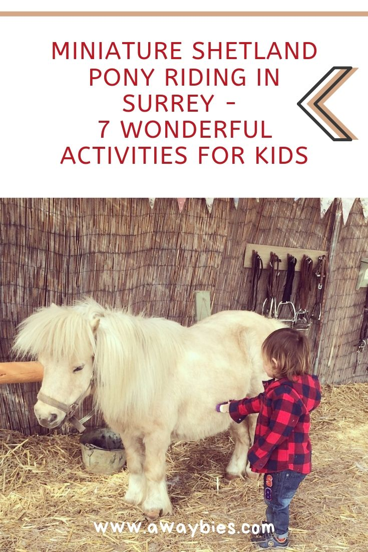 Shetland pony riding for kids Surrey UK